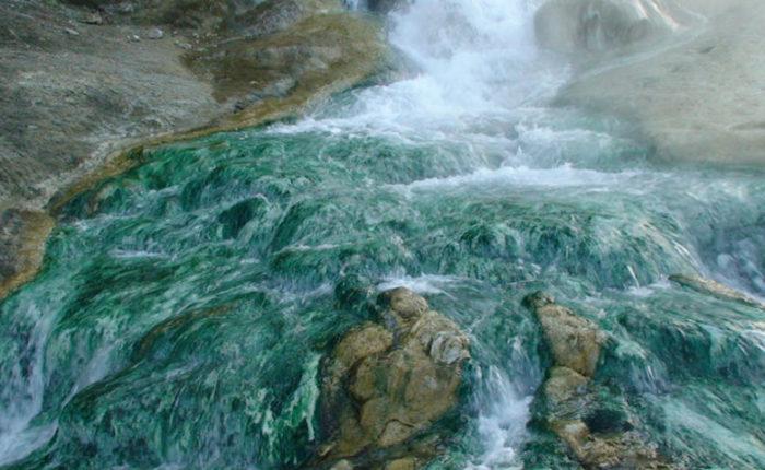Фермопилы, озеро Дамаста (Псоронери), мост Горгопотамос (фото 7)