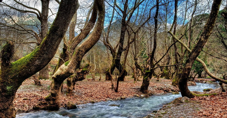Пещера Озер, Планитеро, виноградник Павсания (фото 6)