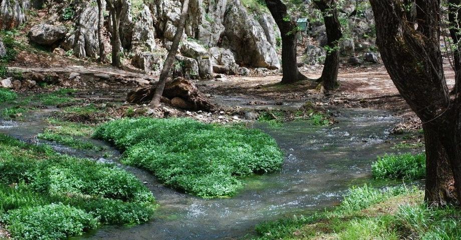 Пещера Озер, Планитеро, виноградник Павсания (фото 7)