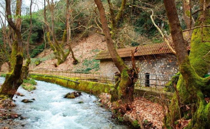 Пещера Озер, Планитеро, виноградник Павсания (фото 9)