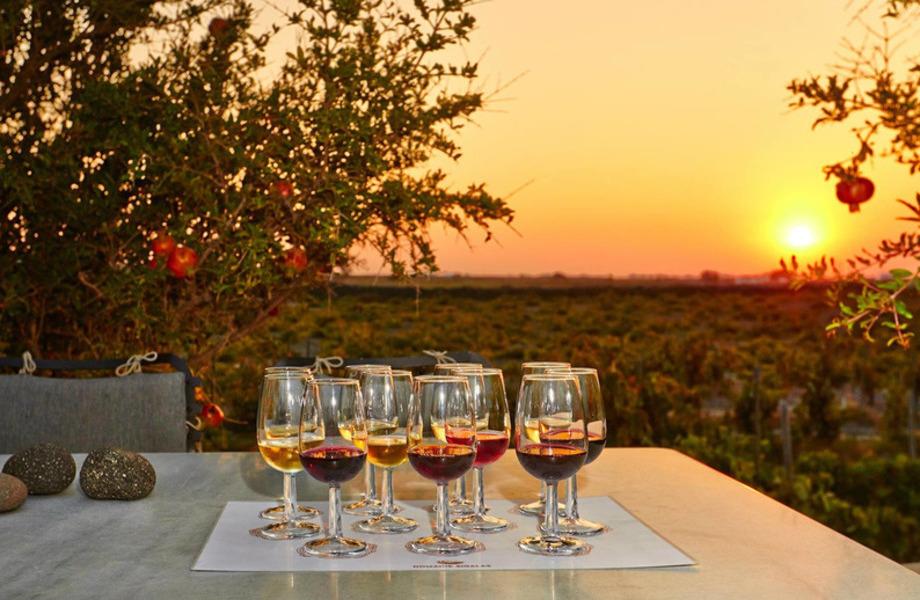 Дегустация вина и дегустационные туры (превью)