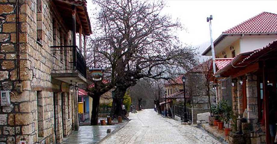 Greece Travel: Озеро Цивлу (пикник), деревушка Зарухла (фото 5)