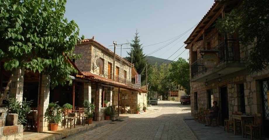 Greece Travel: Озеро Цивлу (пикник), деревушка Зарухла (фото 9)