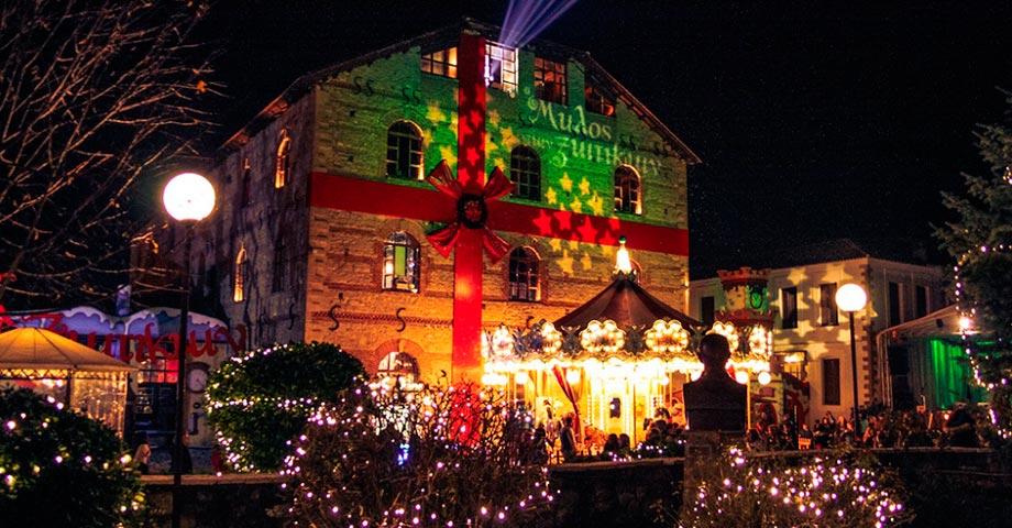 Новый год 2021 (31декабря – 1-2 января): Трикала (ярмарка «Мельница эльфов»), Касторья, Мецово (фото 6)