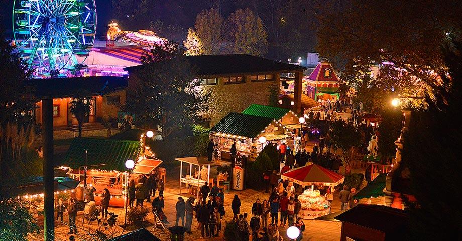 Новый год 2021 (31декабря – 1-2 января): Трикала (ярмарка «Мельница эльфов»), Касторья, Мецово (фото 8)