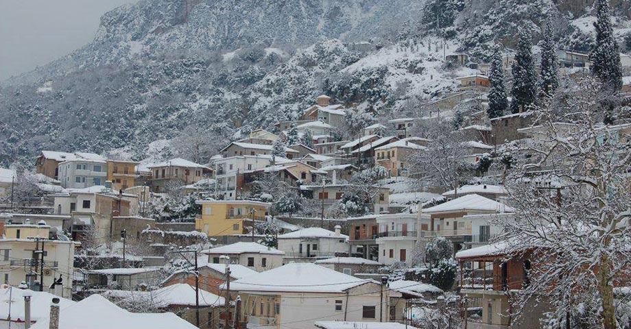 Рождество 2021 (24-25-26 декабря): Ливадья, Хиронеа, Амфиклия, Ипати, Карпениси, монастырь св.Агафона, Павлиани (фото 13)
